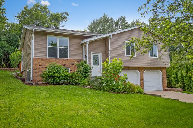 1304 Merrill Avenue, Algonquin, IL 60102 (MLS #09994941) :: Ani Real Estate