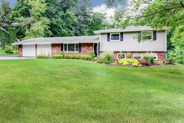 1243 Gordon Street, New Lenox, IL 60451 (MLS #09995124) :: Ani Real Estate