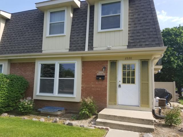 2220 Andover Court -, Schaumburg, IL 60194 (MLS #09995135) :: Ani Real Estate