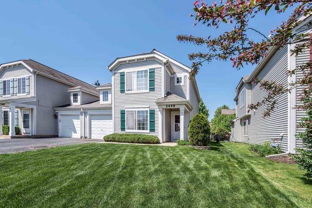 2459 Summerwind Lane, Montgomery, IL 60538 (MLS #09995183) :: Ani Real Estate