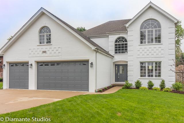 737 N Michigan Street, Elmhurst, IL 60126 (MLS #09995302) :: Ani Real Estate