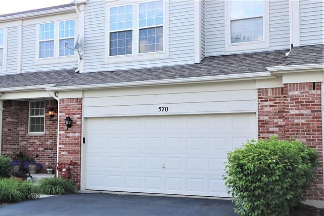 570 Woods Creek Lane, Algonquin, IL 60102 (MLS #09995326) :: Ani Real Estate