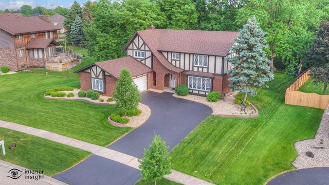 14176 S Oak Ridge Drive, Homer Glen, IL 60491 (MLS #09995329) :: Ani Real Estate