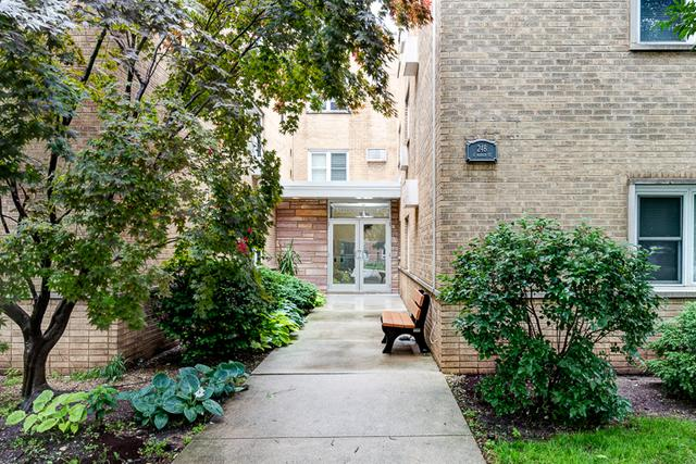 248 S Marion Street #206, Oak Park, IL 60302 (MLS #09995416) :: Ani Real Estate