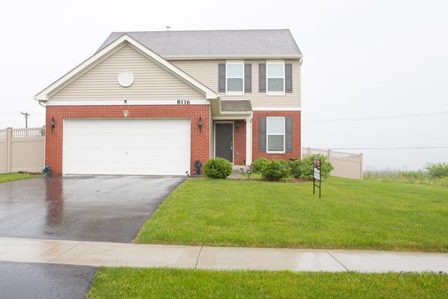 8116 Wood River Street, Joliet, IL 60431 (MLS #09995494) :: Ani Real Estate