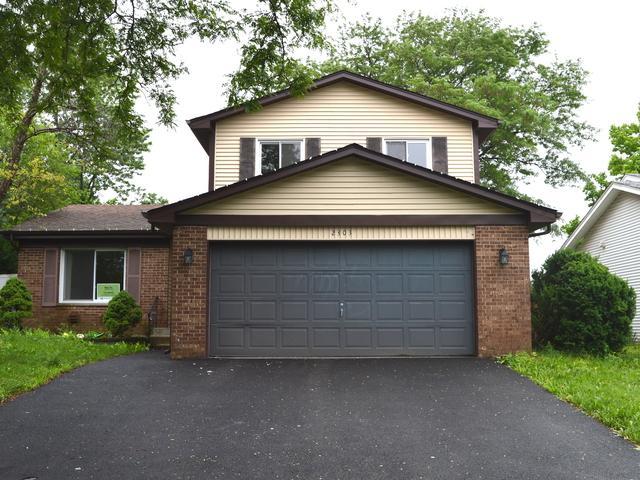 2303 Sunnydale Drive, Woodridge, IL 60517 (MLS #09995596) :: The Dena Furlow Team - Keller Williams Realty
