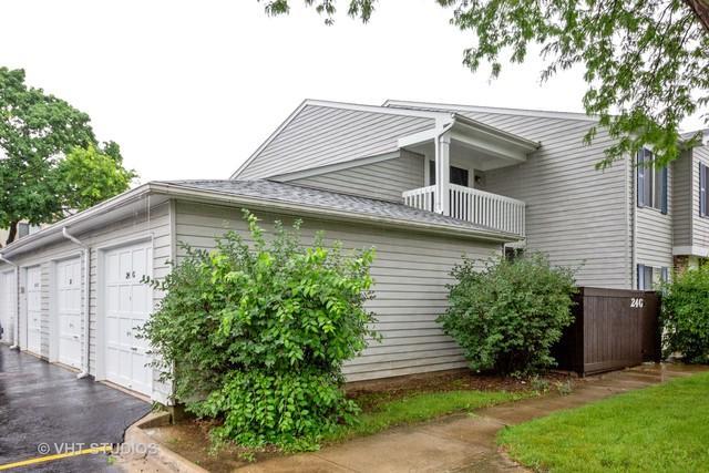 24 Fernwood Drive G, Bolingbrook, IL 60440 (MLS #09995630) :: Ani Real Estate