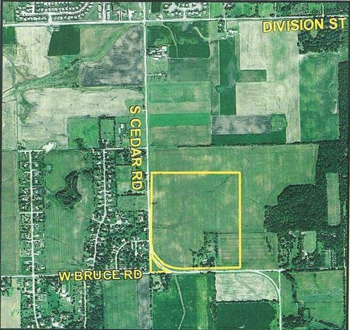 14604 W Bruce Road, Homer Glen, IL 60491 (MLS #09995699) :: Ani Real Estate