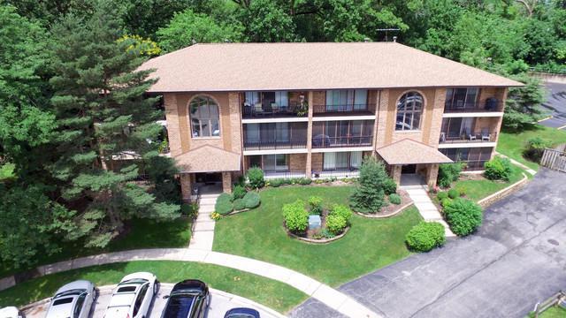 9750 Ravinia Lane #103, Orland Park, IL 60462 (MLS #09995893) :: Ani Real Estate