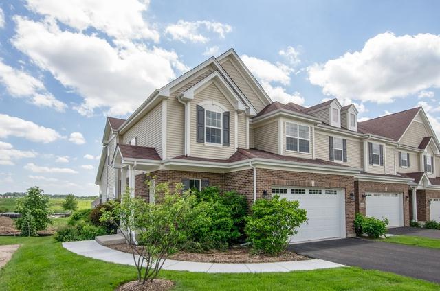 2007 Magenta Lane, Algonquin, IL 60102 (MLS #09996020) :: Ani Real Estate