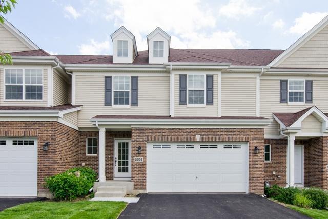 2005 Magenta Lane, Algonquin, IL 60102 (MLS #09996021) :: Ani Real Estate