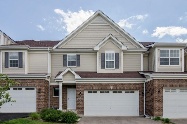 2003 Magenta Lane, Algonquin, IL 60102 (MLS #09996022) :: Ani Real Estate