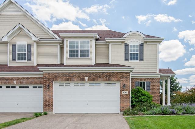 2001 Magenta Lane, Algonquin, IL 60102 (MLS #09996023) :: Ani Real Estate