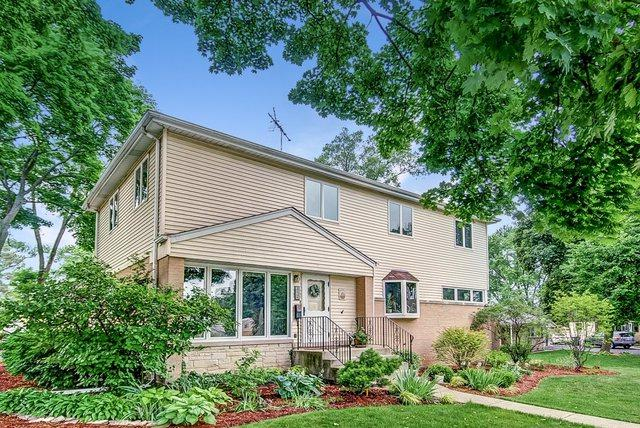 1104 N Pine Avenue, Arlington Heights, IL 60004 (MLS #09996151) :: The Dena Furlow Team - Keller Williams Realty