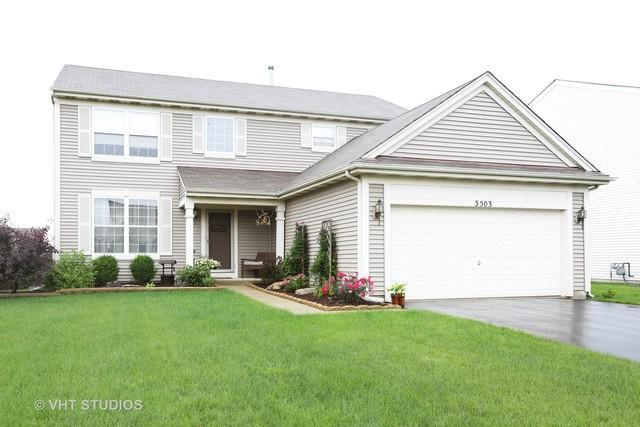 3503 Brittany Drive, Joliet, IL 60435 (MLS #09996584) :: Ani Real Estate