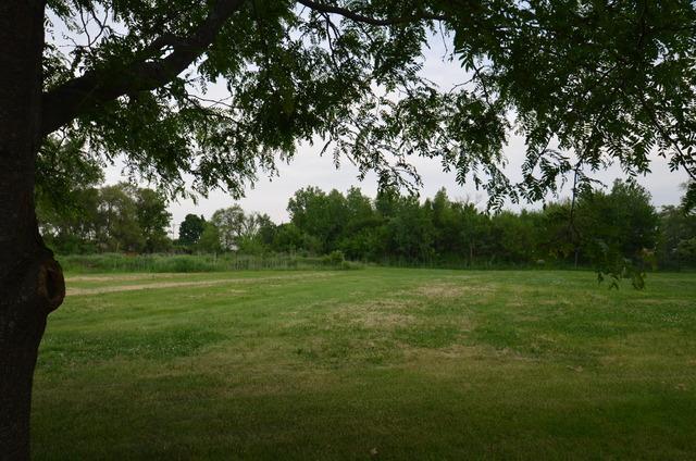 238 Stephen Drive, Joliet, IL 60431 (MLS #09996588) :: Ani Real Estate