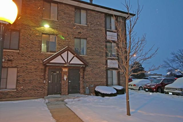 225 Gregory Street #2, Aurora, IL 60504 (MLS #09996681) :: Ani Real Estate
