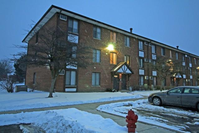291 Gregory Street #11, Aurora, IL 60504 (MLS #09996687) :: Ani Real Estate