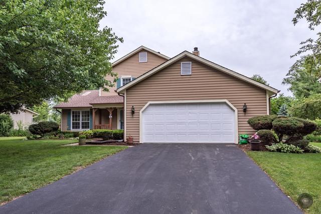 1436 Pinetree Drive, Naperville, IL 60565 (MLS #09996716) :: Ani Real Estate