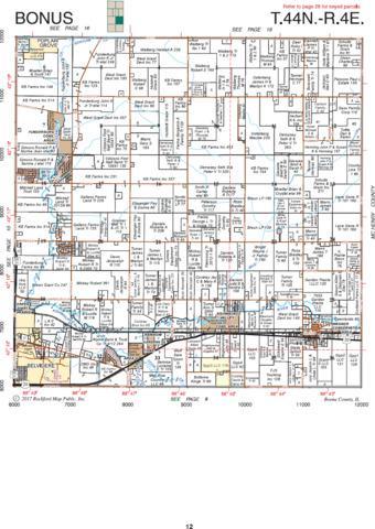 9620 Spring Road, Garden Prairie, IL 61038 (MLS #09998344) :: The Dena Furlow Team - Keller Williams Realty