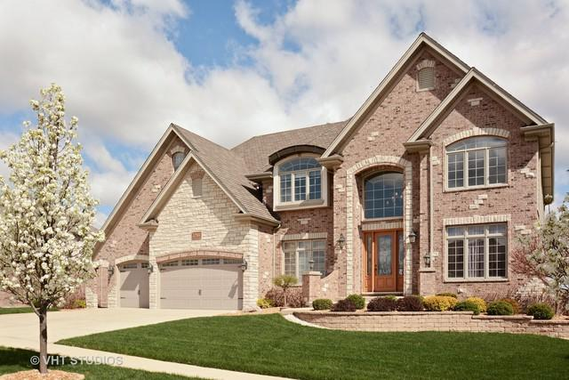 22502 Nature Creek Circle, Frankfort, IL 60423 (MLS #10004370) :: Domain Realty