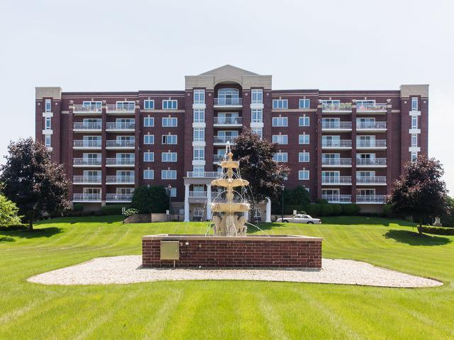7061 W Touhy Avenue #610, Niles, IL 60714 (MLS #10005732) :: Domain Realty