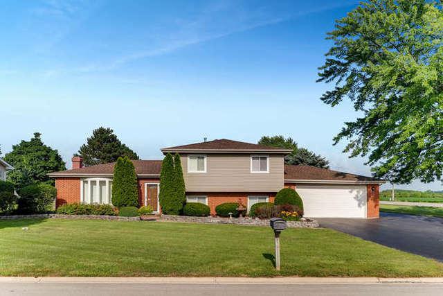 25061 S Marian Avenue, Elwood, IL 60421 (MLS #10007806) :: Domain Realty