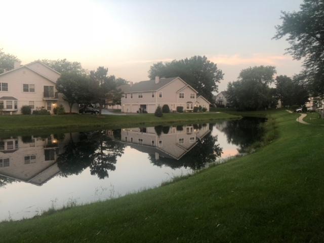 445 N Lake Shore Drive, Palatine, IL 60067 (MLS #10009298) :: Baz Realty Network | Keller Williams Preferred Realty