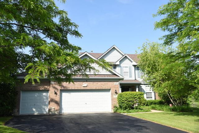 27 S Chestnut Court, Hawthorn Woods, IL 60047 (MLS #10010704) :: The Schwabe Group