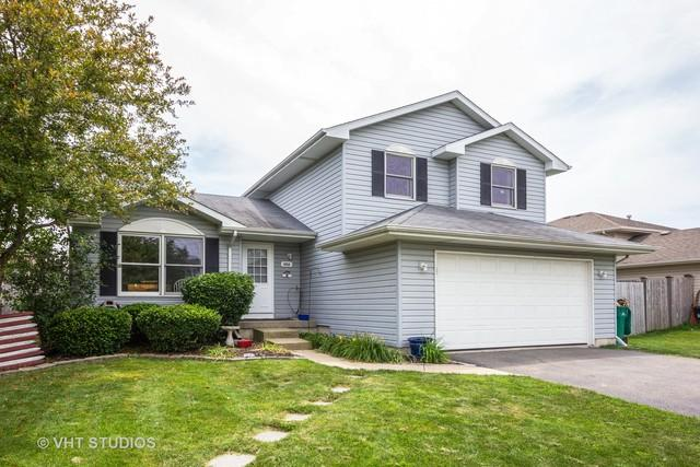 6910 Cottie Drive, Joliet, IL 60431 (MLS #10011744) :: Ani Real Estate