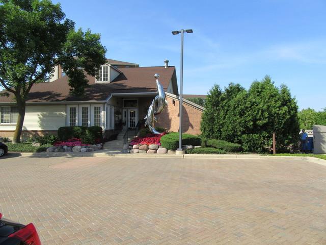 21 Kristin Drive #207, Schaumburg, IL 60195 (MLS #10015798) :: Domain Realty