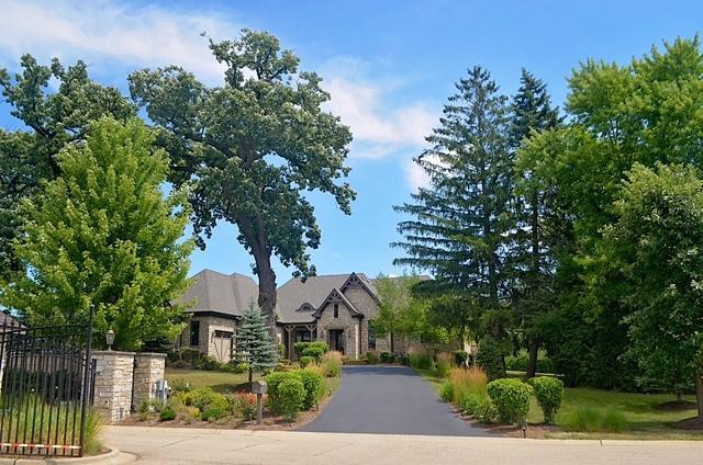 24215 N Coneflower Drive, Lake Barrington, IL 60010 (MLS #10018208) :: The Jacobs Group