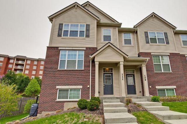 111 Concord Court, Morton Grove, IL 60053 (MLS #10018579) :: Helen Oliveri Real Estate