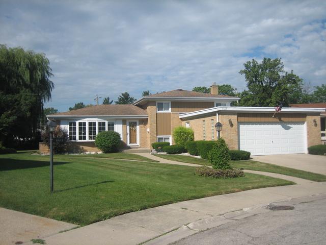6619 Maple Street, Morton Grove, IL 60053 (MLS #10019251) :: Helen Oliveri Real Estate