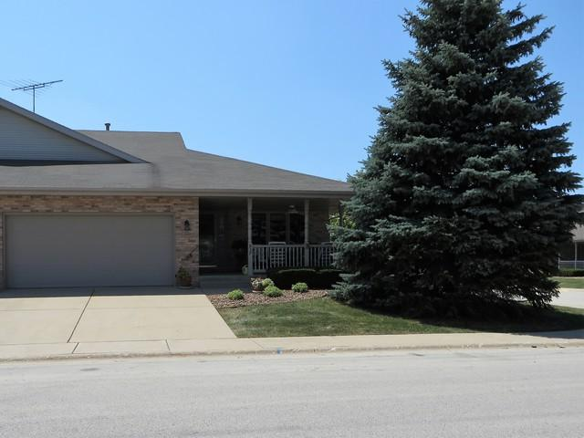 837 Deerpath Lane, Elwood, IL 60421 (MLS #10019645) :: Domain Realty