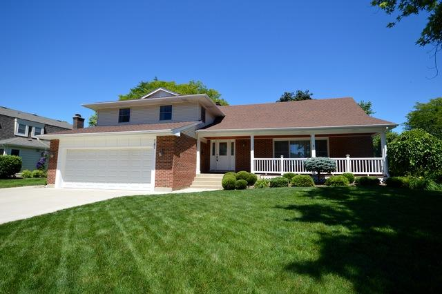 761 S Middleton Avenue, Palatine, IL 60067 (MLS #10020015) :: The Jacobs Group