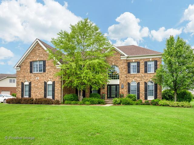 16 Briar Creek Drive, Hawthorn Woods, IL 60047 (MLS #10020040) :: The Schwabe Group
