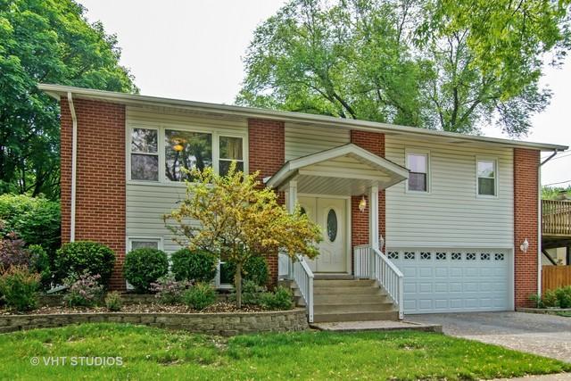 1507 W Catalpa Lane, Mount Prospect, IL 60056 (MLS #10020534) :: Helen Oliveri Real Estate