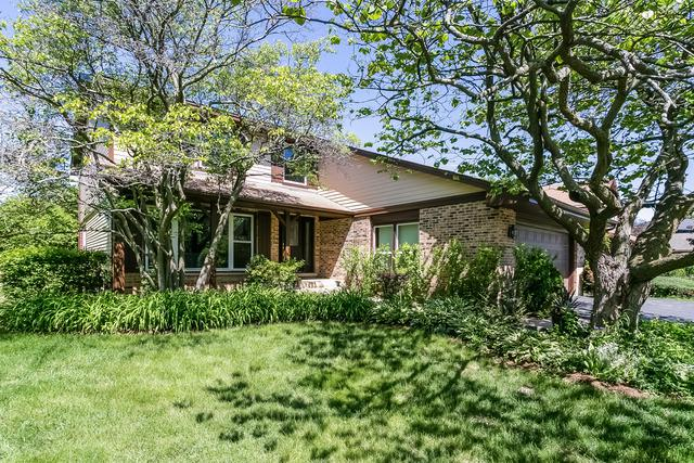 4125 Applewood Lane, Northbrook, IL 60062 (MLS #10020666) :: Helen Oliveri Real Estate