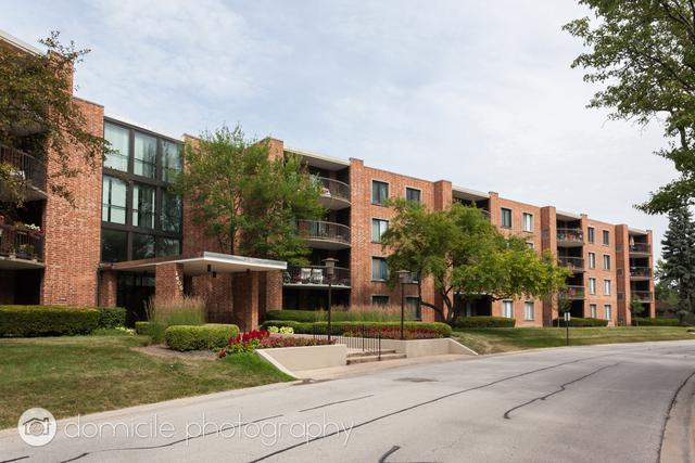 1405 E Central Road 113B, Arlington Heights, IL 60005 (MLS #10020797) :: The Jacobs Group