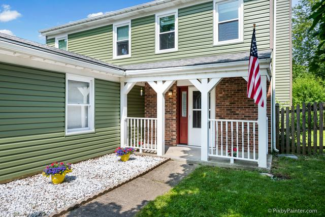 785 Meade Lane, Roselle, IL 60172 (MLS #10020832) :: Domain Realty