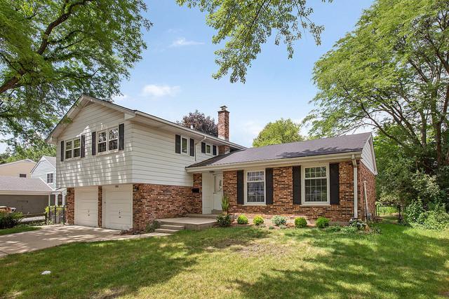 1534 N Haddow Avenue, Arlington Heights, IL 60004 (MLS #10020988) :: Helen Oliveri Real Estate