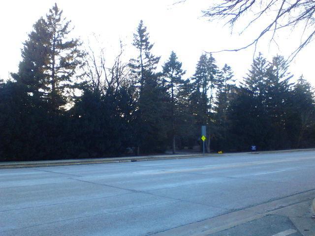 4641 Kirchoff Road, Palatine, IL 60067 (MLS #10021175) :: Helen Oliveri Real Estate