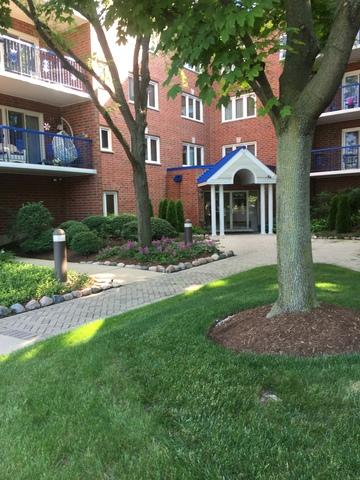 6755 N Milwaukee Avenue #206, Niles, IL 60714 (MLS #10022045) :: Helen Oliveri Real Estate