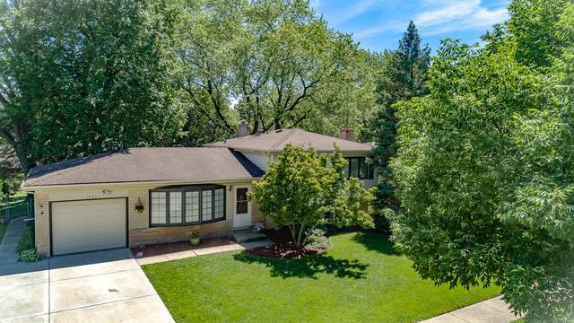 1727 W Lincoln Street, Mount Prospect, IL 60056 (MLS #10022073) :: Helen Oliveri Real Estate