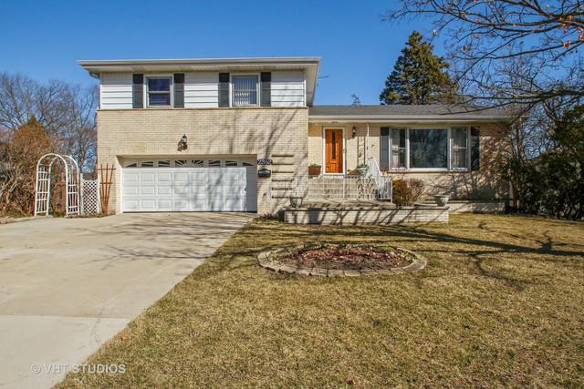 2362 Dewes Street, Glenview, IL 60025 (MLS #10022212) :: Helen Oliveri Real Estate