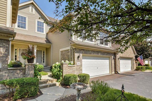 193 River Mist Drive, Oswego, IL 60543 (MLS #10022323) :: Helen Oliveri Real Estate
