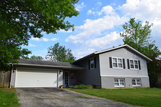 6101 Ridgeway Drive, Woodridge, IL 60517 (MLS #10022387) :: The Jacobs Group