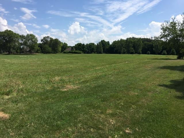 Lot 1 S Ford Road, Channahon, IL 60410 (MLS #10022707) :: The Wexler Group at Keller Williams Preferred Realty