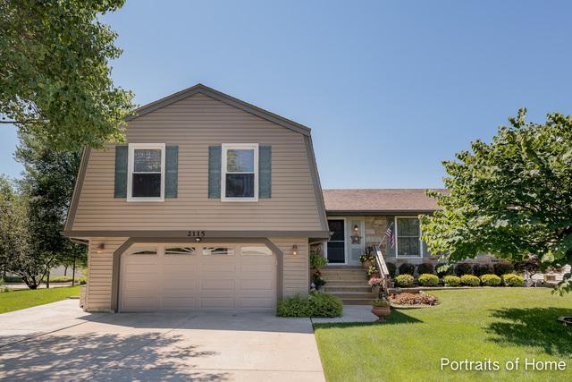2115 Tiffany Drive, Schaumburg, IL 60194 (MLS #10023247) :: Leigh Marcus | @properties